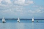 Barcos_ Anzio
